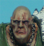Close up shot of the head